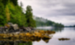 bigstock-vancouver island-220120390.jpg