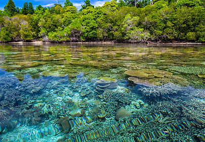 Indonesia pixabay.jpg