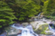 AdobeStock_Yakushima waterfall.jpeg