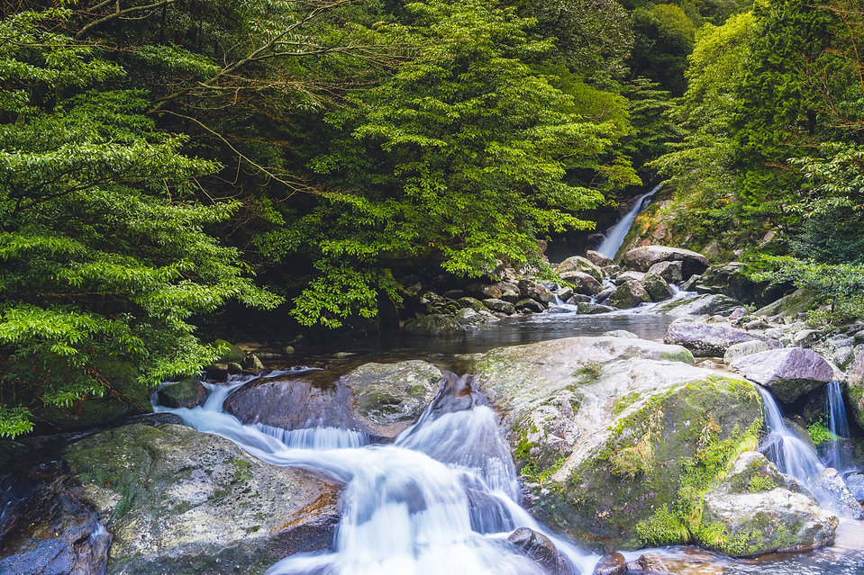 AdobeStock_Yakushima waterfall.jpeg