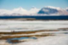 Svalbard 572 (1 of 1).jpg