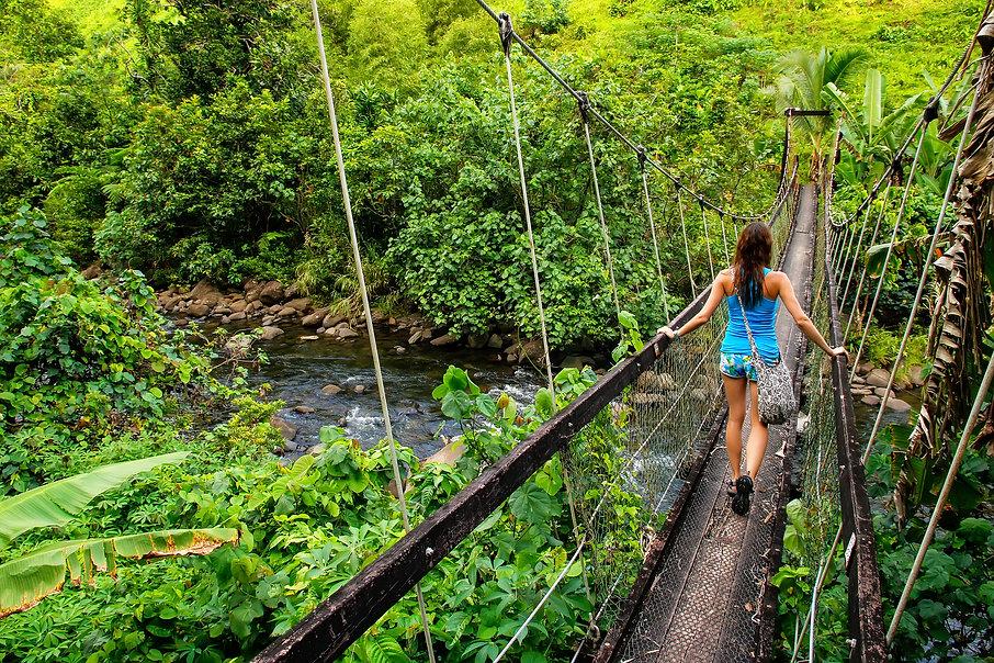 Taveuni Island Fiji BigStock.jpg