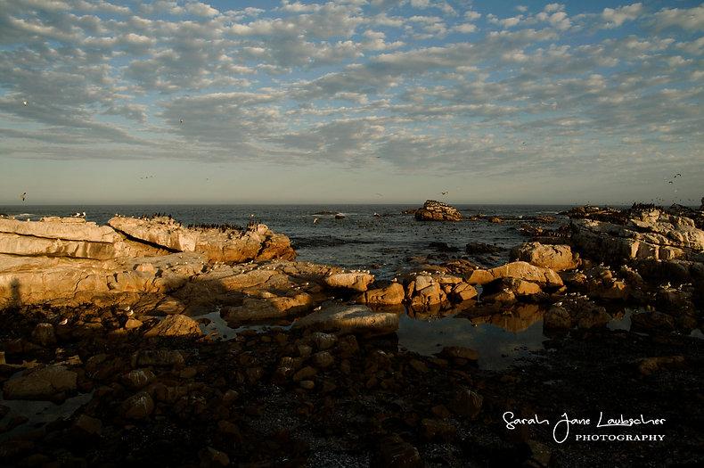 Early morning Lamberts bay.jpg