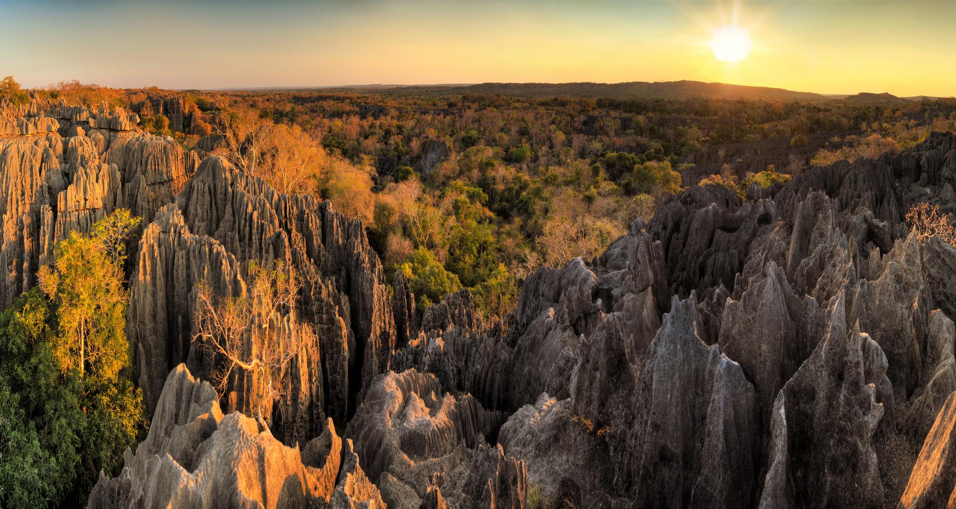 Tsingy Landscape - Madagascar