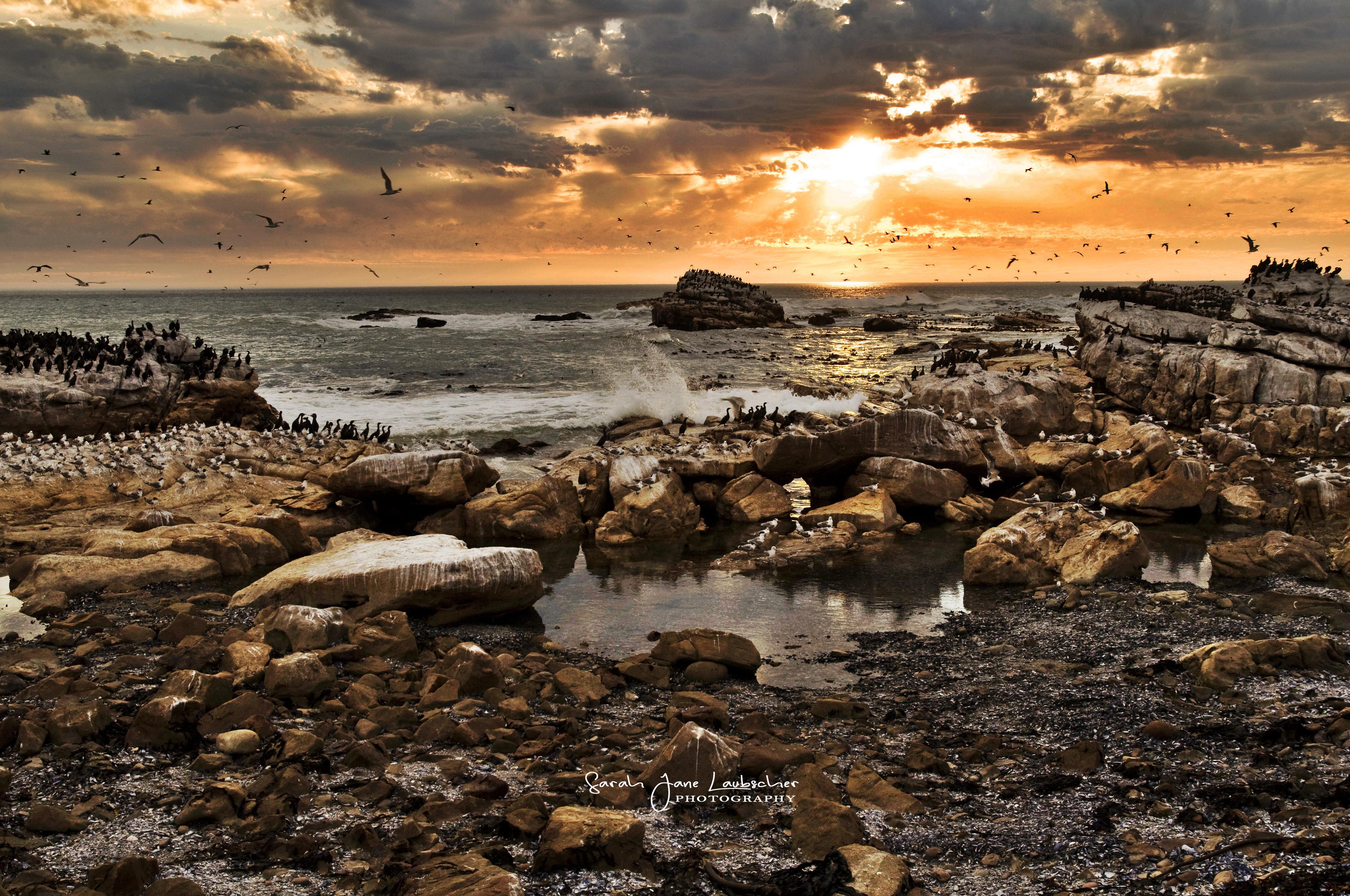 Lamberts Bay Sunset