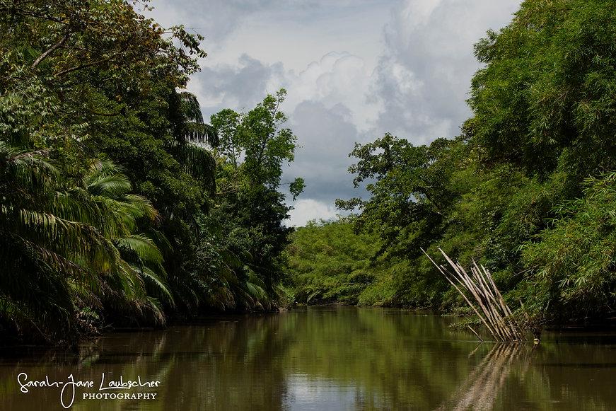 Costa Rica 477 (1 of 1).jpg