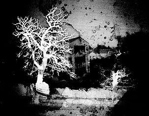 Sténopé_image.jpg