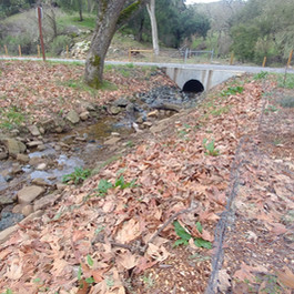 Drainage after Storm - February 2019