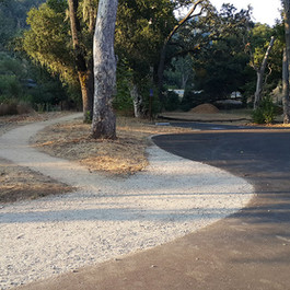 Trail and horse trailer parking