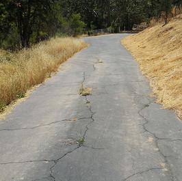 Carmelita - Very Narrow Road