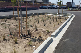 Santa Maria Development Review storm water treatment area in Costco parking lot
