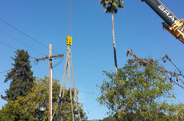 A very large crane was used to lift over all the utilities