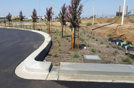 Santa Maria Development Review storm water treatment area at Costco