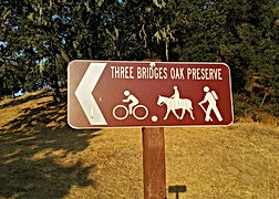 three bridges sign.jpg