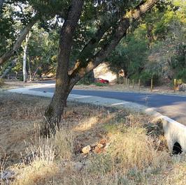 Blueline Creek Crossing
