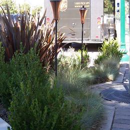 El Camino Enhancement Project