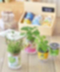 Herb Gift Growing kit - Relax Set.jpg