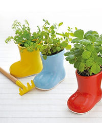 Baby Boots Cultivation Set.jpg