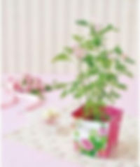 Mini Rose Floral Container.jpg