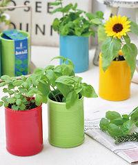 Plant Can.jpg