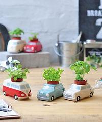 Auto Plant.jpg