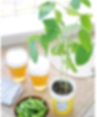 Edamame Cultivation Set.jpg