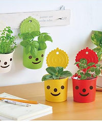 Smile & Smile.jpg