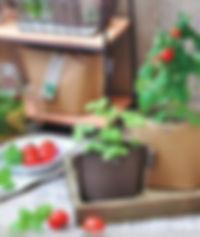 Cellulose Vege Pack.jpg