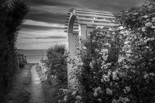 Dramatic Path