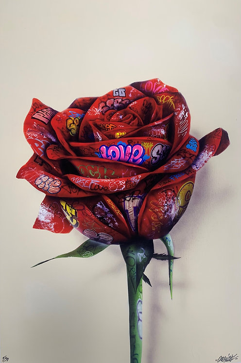 Rose de bitume