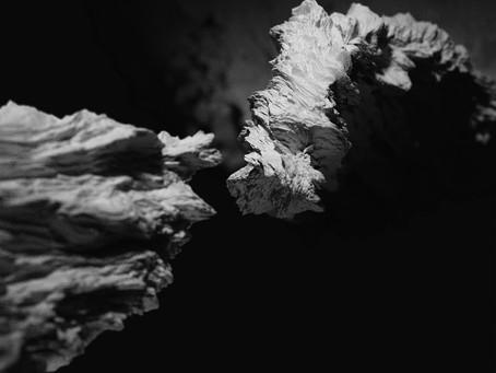 PREMIERE: Kinkajous - It Blooms/Then Nothing