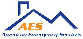 42582 AES Logo.jpg