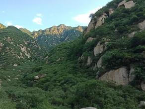 China: Courage & Renewal