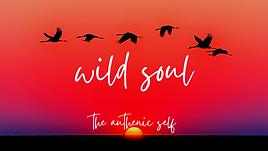 wild soul poster june 2021.png
