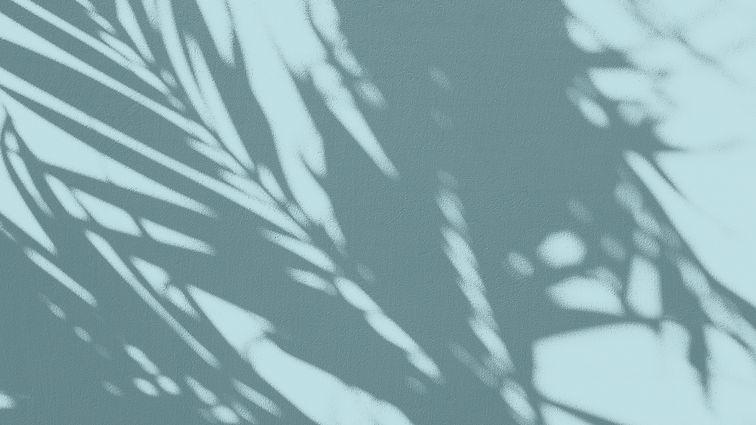 texture_2.jpg