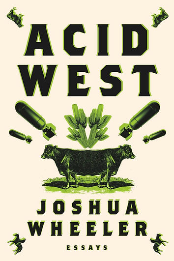 Acid West book cover