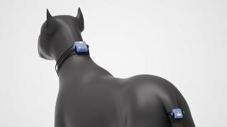 AI Pet Device