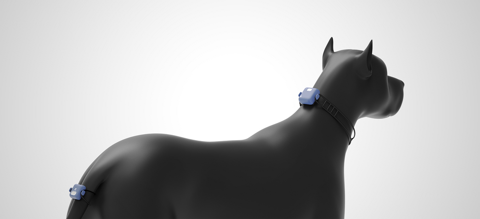 AI pet device_designgree_004