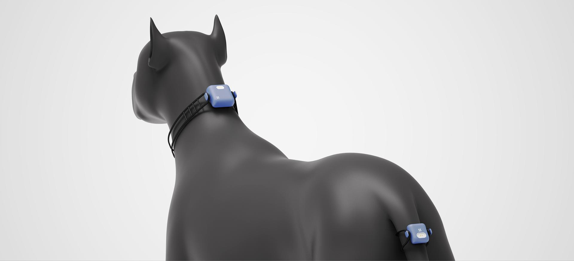 AI pet device_designgree_001