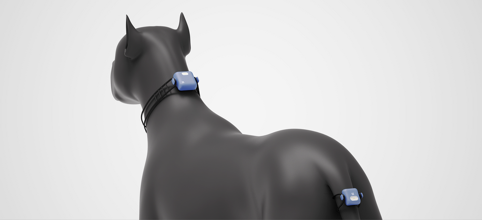 AI pet device_designgree_001