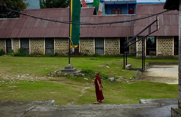Buddhist in the wind.jpg