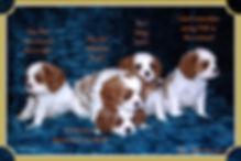 19-01-05 Girls op.jpg