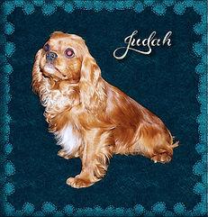 Judah 2 5-21.jpg
