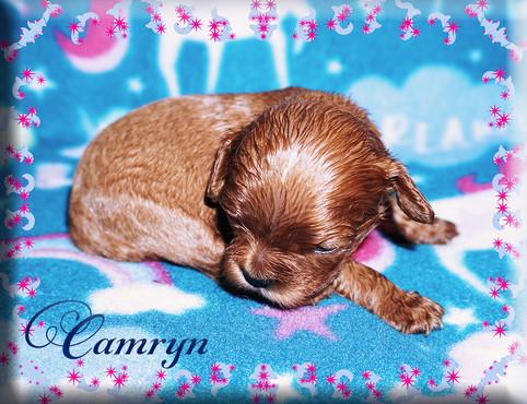 21-04-06 Camryn 6 1m.jpg