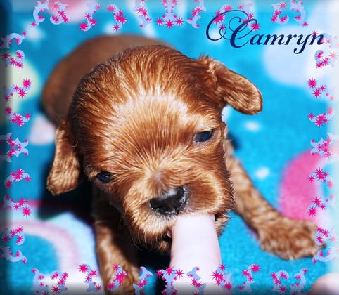 21-04-06 Camryn 3 1m.jpg