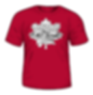 2016-shirt.png