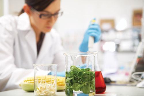 science_in_food_500