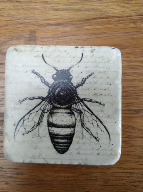 Bee Coaster single with wide wings