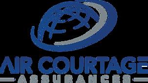 Logo version bleu gris.png
