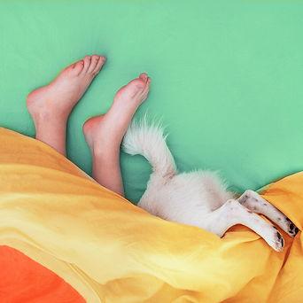 Sleep-Number-Bed-nichole-fowler.jpeg